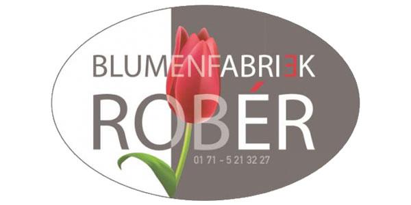 rober_slide